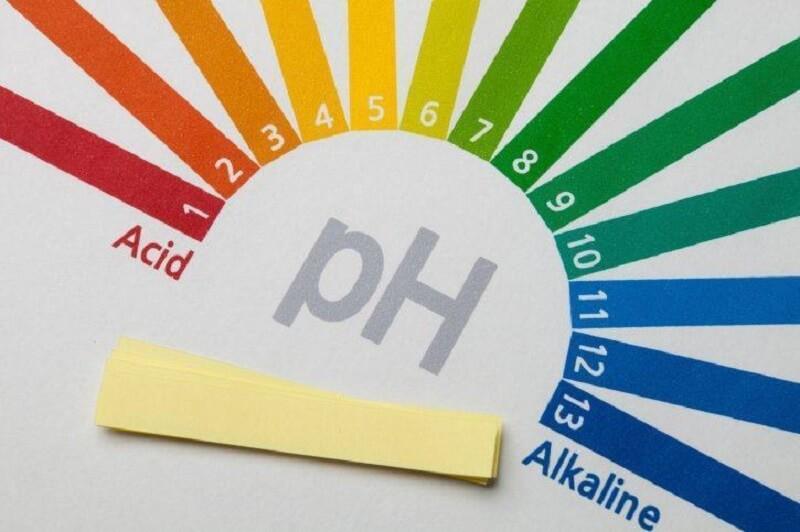 Cách kiểm tra độ pH trong cơ thể bằng giấy thử