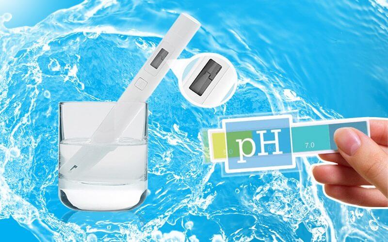 Kiểm tra độ pH trong nước máy với quỳ tím