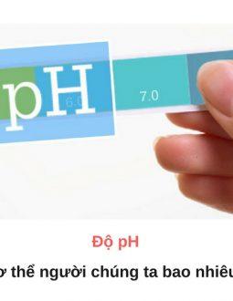 Độ pH trong cơ thể người được hiểu là chỉ số để đo hoạt động của ion H+ bên trong dung dịch