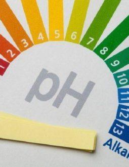 Độ pH trong máu người bình thường nằm trong khoảng 7,35 cho tới 7,45