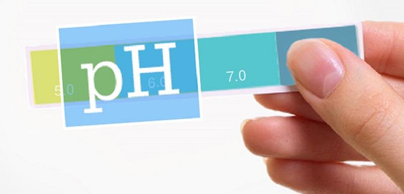 Độ pH của nước được hiểu là thước đo nồng độ kiềm hoặc axit có trong nước