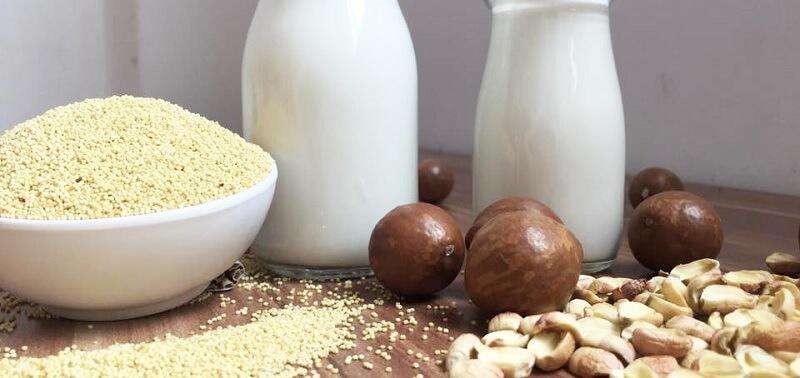 Sữa hạt dinh dưỡng là thức uống yêu thích của nhiều người