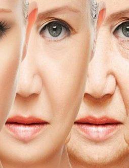 Lão hóa ngược chính là niềm mơ ước của rất nhiều chị em hiện nay