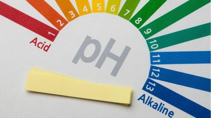 Thang đo độ pH của nước