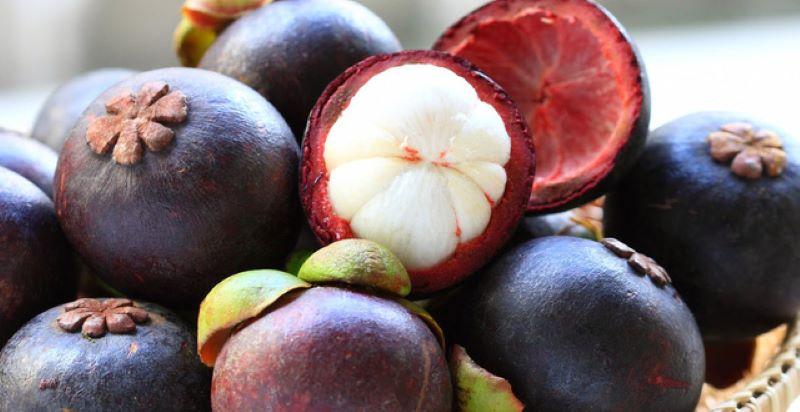 Trong trái cây chứa nhiều chất chống oxy hóa