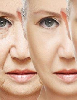 Oxy hóa da là gì? Những tuyệt chiêu chống oxy hóa cho da hiệu quả