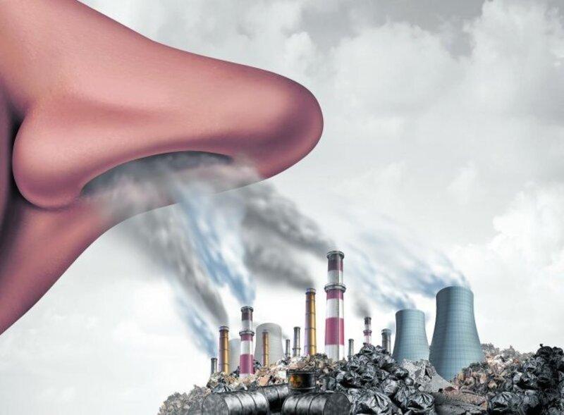 Môi trường ô nhiễm là tác nhân hàng đầu gây stres oxy hóa